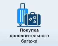 Покупка дополнительного багажа